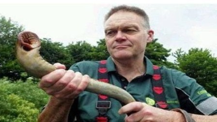 这种生物在英国泛滥,在中国被吃到灭绝,吃货直呼蒜香还是麻辣