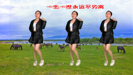 点击观看《阿裙广场舞32步步子舞红尘雨流行舞曲》
