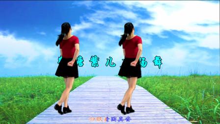 点击观看《鹤塘紫儿广场舞酒梦 弹跳28步教学视频》