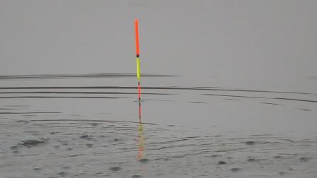 野钓时,鱼漂下面浮起一片气泡,求高手告诉我这是什么鱼