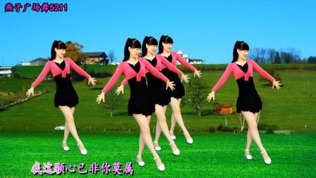 燕子广场舞5211望爱却步教学分解 手把手教你跳舞蹈视频