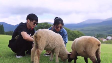 """【看点】《我们恋爱吧》""""陈墨""""cp又发糖了,一起喂羊挤牛奶互动甜cry!"""