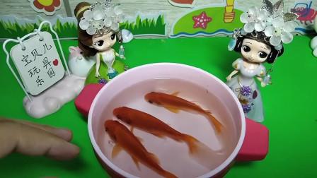 貝兒用手抓金魚,她會成功嗎