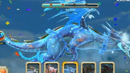 饥饿龙:这款白色飞鸟你们都玩过吗,玩起来是什么样子的?