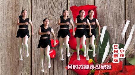 精选无基础32步广场舞视频教程小花 DJ动感阿裙