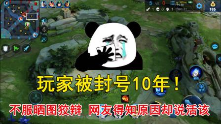 王者荣耀:玩家被封号10年!不服晒图狡辩,网友得知原因却说活该