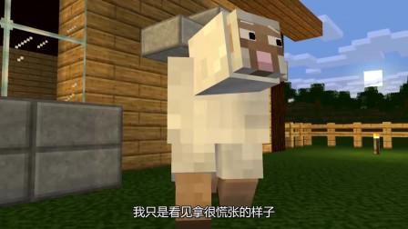 我的世界:卷毛的小山羊快要成为食物了,小羊不停的想出各种办法