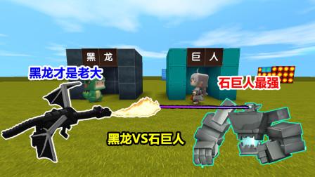 迷你世界:小表弟是黑龙,我是远古巨人!两边PK谁更强