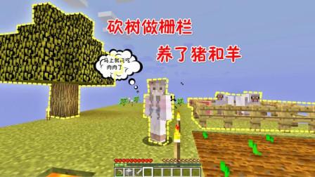 我的世界空岛生存03:做好栅栏养猪羊,再也不用啃面包吃素啦!