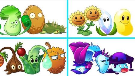 四组植物组合比赛,你最看好哪一组?上半场