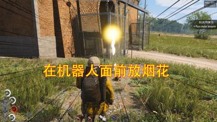 饺子:在机器人面前放烟花 机器人会有什么反应 嫂子说我在作死