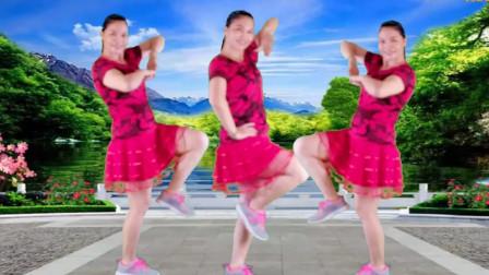 云淡轻风广场舞《鸟儿对花说》原创水兵舞16步歌曲好听附教学