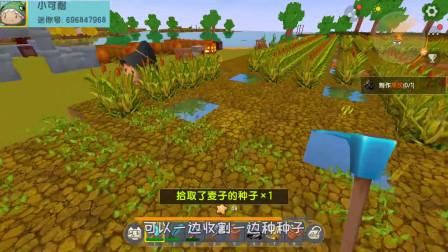 蓝小胖迷你世界:生存第67天,终于告别了矿洞,回到了心心念念的家里,先把成熟的麦子收割了吧!