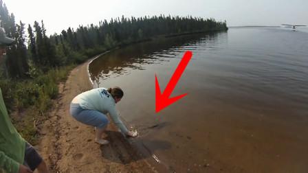 善良女子将鱼儿放生,刚放进水里意外发生,镜头记录全过程