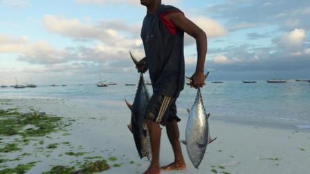 见过非洲人捕鱼吗?这种昂贵美食他们随手就扔,原因让人哭笑不得