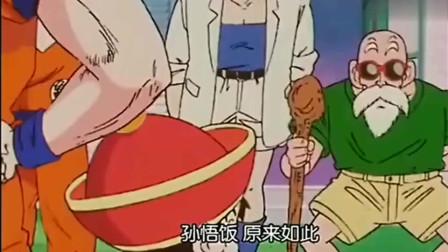 七龙珠:悟空带儿子孙悟饭找龟仙人,所有人被吓懵,小悟饭的声音好萌!