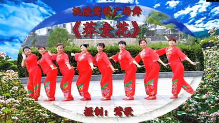沅陵莺歌广场舞《荞麦花》民族舞秧歌