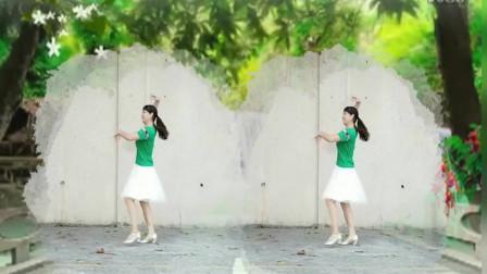 中年妇女最爱广场舞 好姑娘真漂亮舞蹈教学视频分解动作