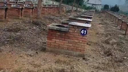 设计师你出来 我就问你咋想的 设计得公墓似的