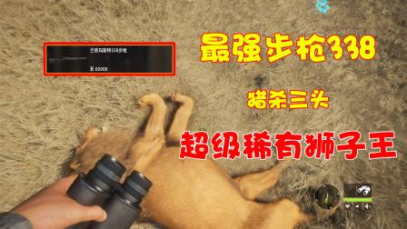 饺子:耗巨资买到最强步枪兰奇玛斯特338 猎杀3头超级稀有狮子王