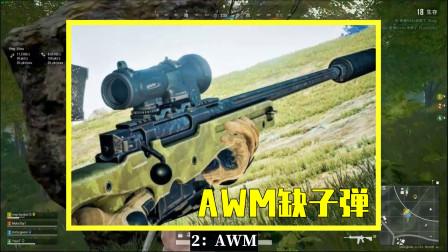 吃鸡小讲堂:M416缺伤害,AWM缺子弹,只有它才是最完美的枪!