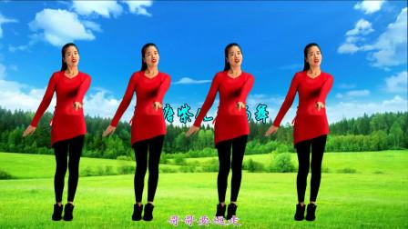 鹤塘紫儿广场舞《为爱闯天涯》