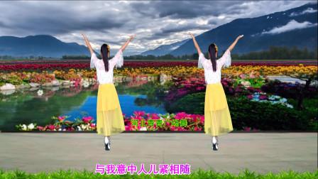 河北青青广场舞《女儿情》背面演示和口令分解双教学