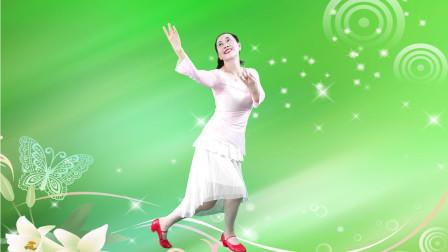 玖月广场舞《梦中的雪莲花》一步一步广场舞教程分解