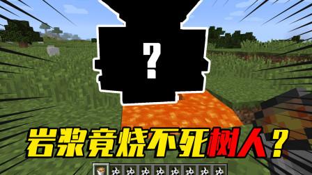 我的世界mod:岩浆都烧不死的神秘树人,到底长什么样?