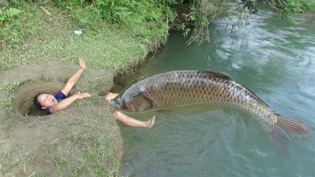 乡村女子发明奇特捕鱼法,大鱼排队涌上来,躺着收获一坑槽大鱼!