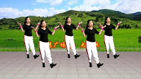点击观看《小慧广场舞《大风歌》创新32步教学》