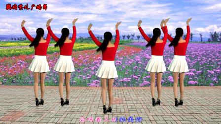 点击观看《鹤塘紫儿广场舞 dj版《百花香》32步舞蹈视频》