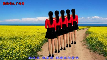 点击观看《鹤塘紫儿原创32步广场舞教程百花香dj 一步一步教》