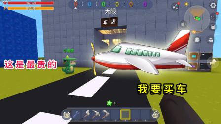 """迷你世界:小表弟是车店老板,我买了最贵的""""飞机"""",居然不会飞"""