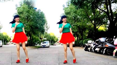 点击观看《麦芽32步鬼步舞视频阳光彩虹小白马 简单又好看》
