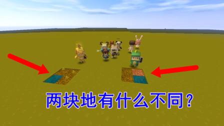 迷你世界故事:谁能看出来这两块田地有什么不同?