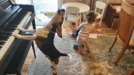 狗狗和宝宝独自在家,主人打开监控后忍不住笑喷,真是太可爱了