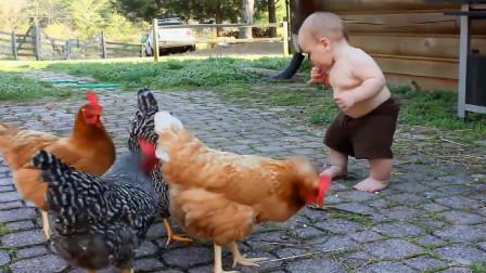 宝宝正在喂鸡,接下来的动作够笑一星期,太搞笑了!