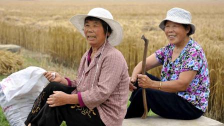 """国家直接点名!农村这一职业将被""""严管"""",老农急了:不一定好啊"""
