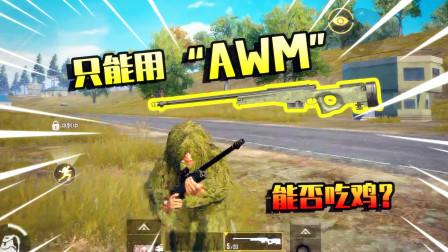 和平精英:只用一把AWM吃鸡,决赛圈打开机瞄,结局如何?