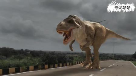 霸王龙从天而降,机器人挑衅落得凄惨下场 恐龙动漫特效