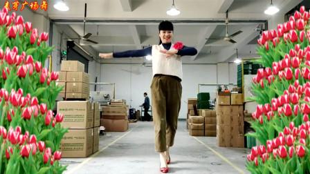 麦芽广场舞《要爱你就来DJ》网红热门曲子 花姐演唱