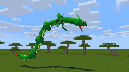 我的世界MC动画:怪物学校《神奇宝贝》,凋零骷髅大师球抢走精灵龙,小智崩溃!