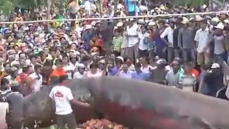 柬埔寨出现12米巨型生物,引来村民纷纷围观!