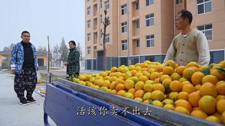 農村大叔賣橘子遇同行惡意攪局,為出氣低價促銷又被大媽套路