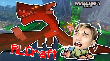 龍更肥了 我的世界籽岷 RLCraft生存