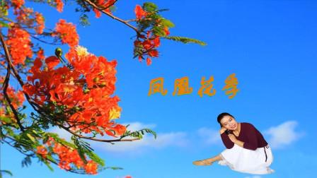 唐山灵之韵广场舞琴音个人版《凤凰花季》步子舞