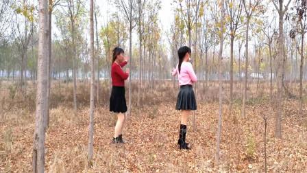 点击观看《河北青青广场舞《哑巴新娘》16步乡村风光实景双人版》