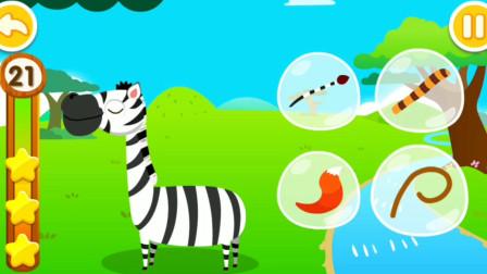 找一找,哪个是斑马的尾巴?宝宝学配对游戏