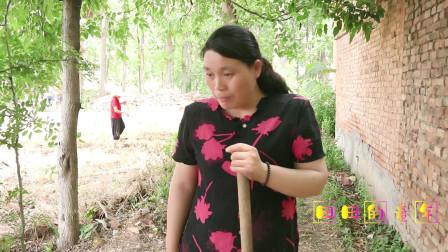 童年趣事:田田和妹妹帮妈妈丢花生种,结果俩人却把花生种全偷吃了,太逗了